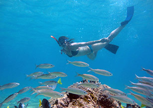 Activities on the Galapagos Islands